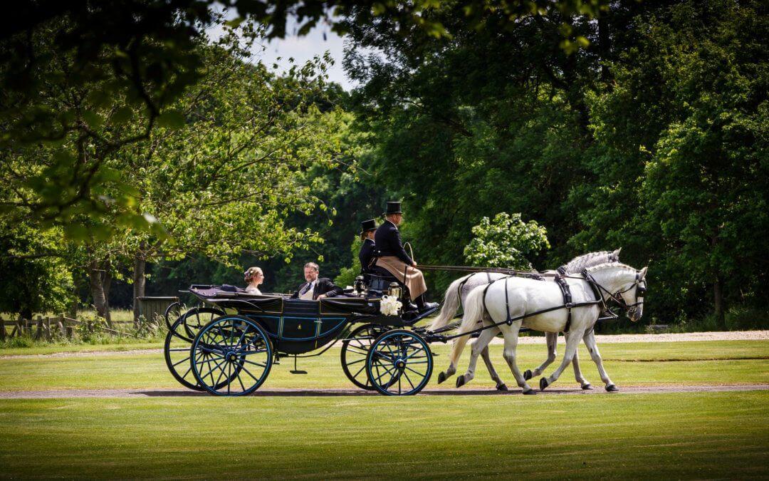 DK Carriage Horses